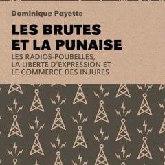 Les brutes et la punaise (Lux Éditeur) – Dominique Payette